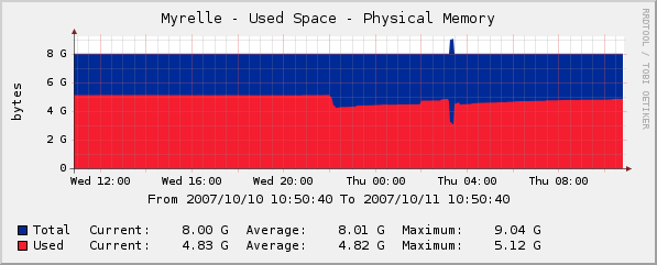 Myrelle - Physical Memory Usage